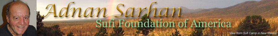 Adnan Sarhan header image
